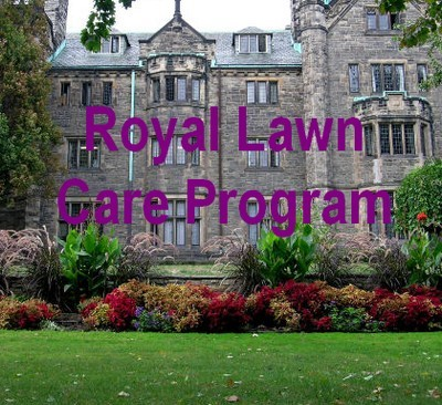 A Royal Lawn Care Program from Turf King for lawns in Oakville
